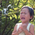 イヤイヤ期の子供の相手をするのはもう限界!と感じた時にはどうすれば良いの?